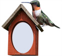 Photo Frame for Birds: 0000790