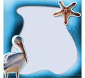 Photo Frame for Birds: 0001280