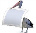 Photo Frame for Birds: 0001282